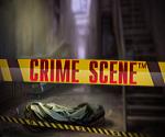 Crime Scene™